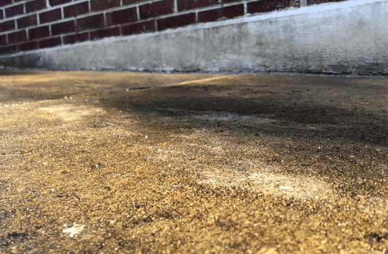 level concrete sidewalk after polyfoam service