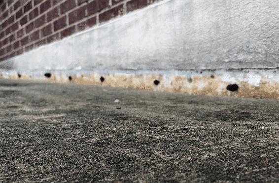 sunken uneven sidewalk before polyfoam service